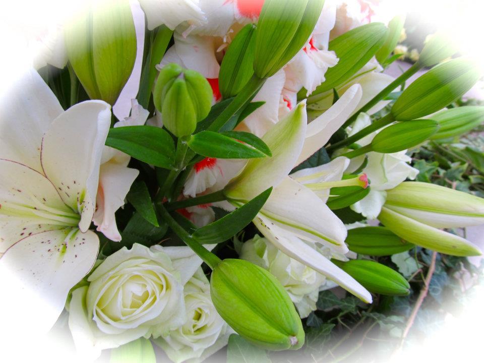 Floriada 2011 – kwiaty